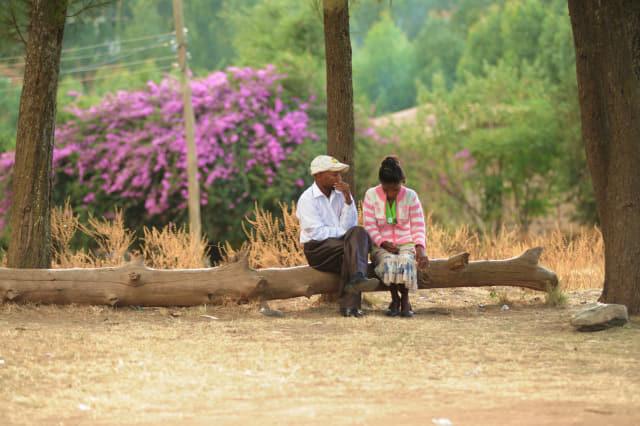 에티오피아의 연인.
