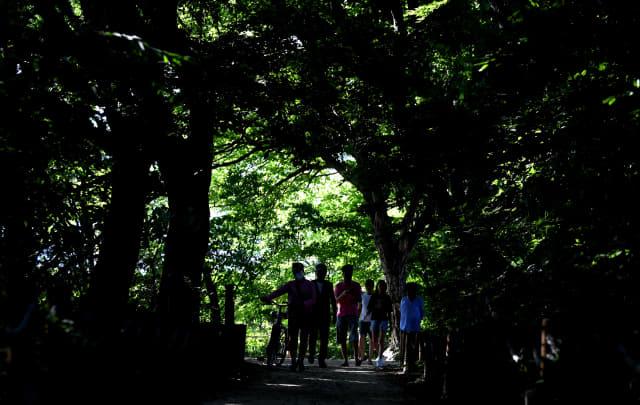 폭염 특보가 발효된 10일 오후 함양군 함양읍 상림공원을 찾은 시민들이 숲이 우거진 그늘 길을 걷고 있다./김승권 기자/