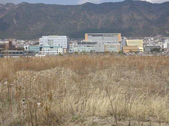 10여 년간 방치돼 있는 부산대 양산캠퍼스 부지./경남신문 DB/