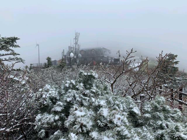 19일 강원 설악산 중청대피소 인근에 내린 눈이 나뭇가지와 대피소 주변에 쌓여 있다./설악산국립공원사무소/