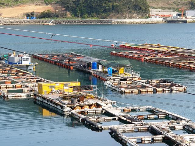지적장애인 B씨가 일하던 통영 섬마을의 가두리 양식장./통영해양경찰서/