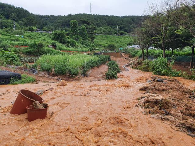 14일 새벽 집중호우로 비탈면이 붕괴되면서 통영시 무전동 일대 4만7900세대에 수돗물을 공급하는 상수도관 파열됐다. 파열된 관에서 수돗물이 흘러 넘치는 모습. /통영시/