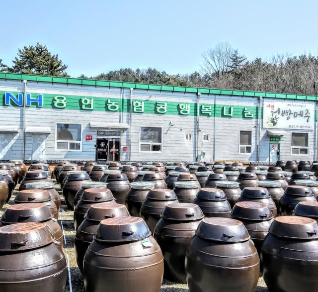 사천 용현농협은 지난 2018년 5만여㎡ 부지에 콩행복나눔가공사업소를 건립, 이곳에서 손두부, 건빵메주, 간장, 된장, 비지 등 콩 관련 상품을 가공·판매하고 있다./용현농협/