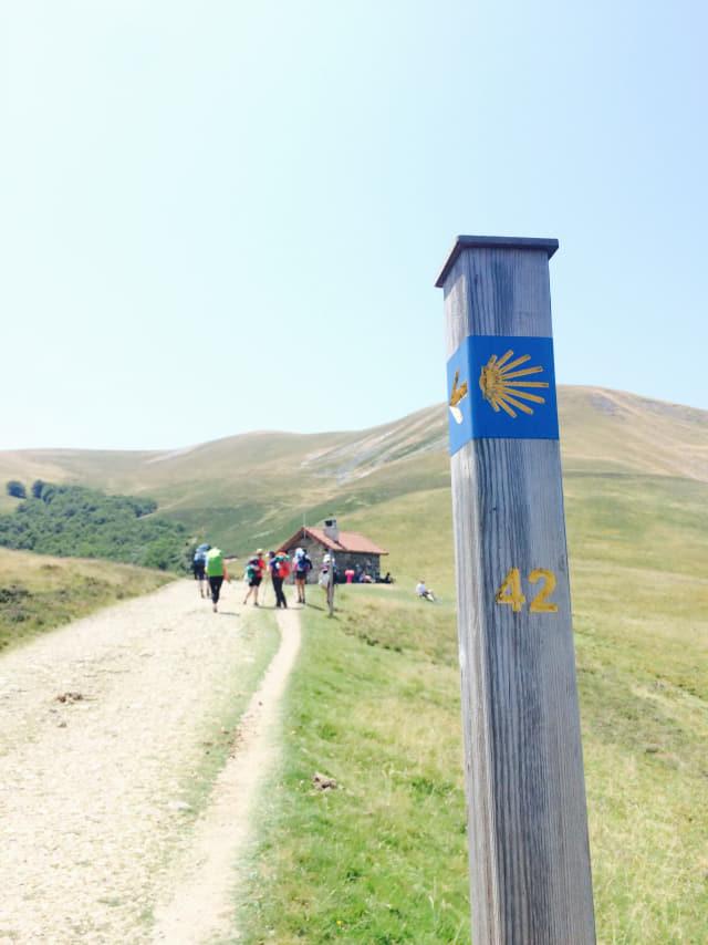 산티아고 순례길의 방향을 안내하는 가리비 표지판.