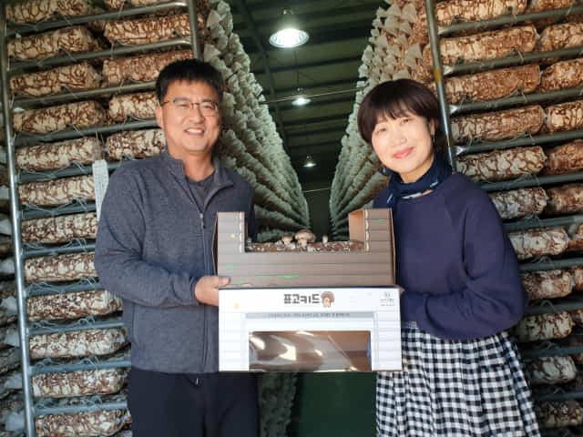 고버섯 키트인 '표고키드'를 파는 (주)다부 이성욱 김희경 부부