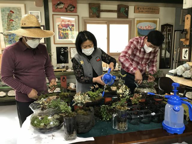 양산시 원동면 배내골 녹색연구소에서 하선근 이사장 등이 가정용 이끼정원을 제작하고 있다.