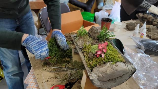 가정용 이끼정원을 제작하고 있는 모습.