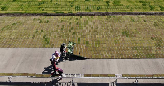 3일 거창군 소재 농업 회사 거창그린 관계자들이 육묘장에서 싹 틔우기 작업이 끝난 모판을 못자리로 옮기는 작업을 하고 있다./거창군/