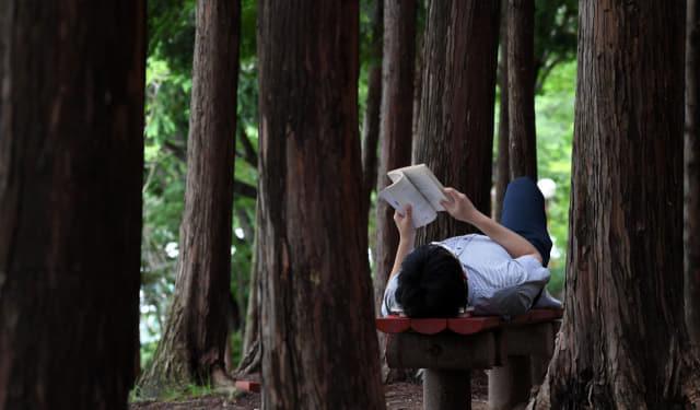 창원시 의창구 용지호수공원에서 김재경 기자가 벤치에 누워 독서를 하고 있다./성승건 기자/