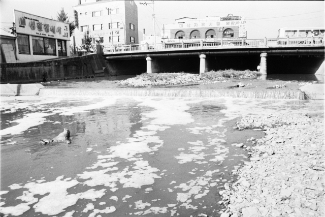 1989년 11월 오염된 마산만 모습.