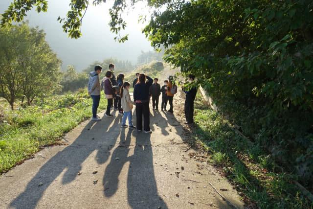 신어산의 아름다운 숲을 산책하며 숲해설을 듣고 있는 사람들.